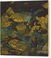 Field At Night Wood Print