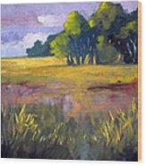 Field Grass Landscape Painting Wood Print