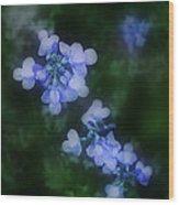 Field In Blue Wood Print