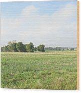 Field In France Wood Print