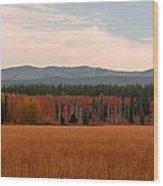 Field In Yellowstone Wood Print