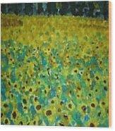 Field Of Daisy's Wood Print