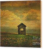 Field Of Dandelions Wood Print by Lois Bryan