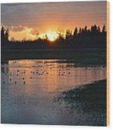 Field Of Ducks Wood Print