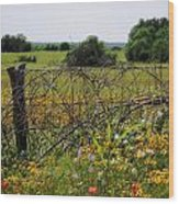 Field Of Flowers 3 Wood Print