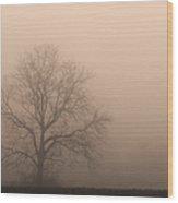 Field Of Fog Wood Print
