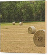 Field Of Freshly Baled Round Hay Bales Wood Print by James BO  Insogna