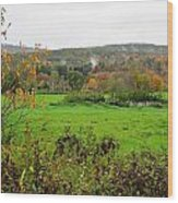 Field Of Green Wood Print