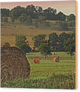 Field Of Hay Wood Print