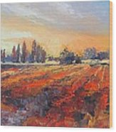Field Of Light Oil Painting Wood Print