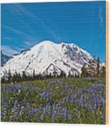 Field Of Lupines And Rainier Wood Print