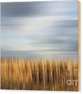 Field Of Maize Wood Print by Bernard Jaubert