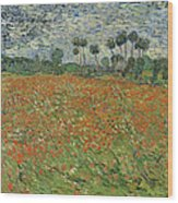 Field Of Poppies, Auvers-sur-oise, 1890 Wood Print