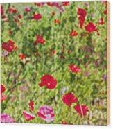 Field Of Poppies Digital Art Prints Wood Print