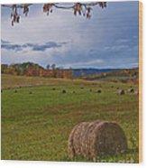 Field Of Round Bales Wood Print