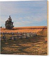 Field Of Shadows Wood Print