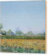 Field Of Sunshine Wood Print