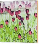 Field Of Tulips - Photopower 1492 Wood Print