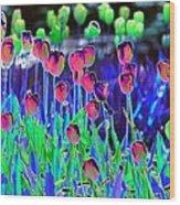 Field Of Tulips - Photopower 1496 Wood Print