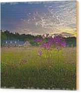 Field Of View Sunset Wood Print