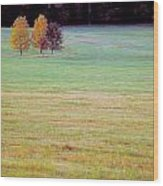 Field With Four Trees Wood Print
