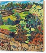 Fields In Autumn Wood Print