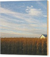 Fields Of Gold - Digital Painting Effect Wood Print