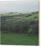 Fields Of Ireland Wood Print