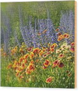 Fields Of Lavender And Orange Blanket Flowers Wood Print