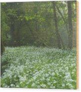 fields of Legend Wood Print