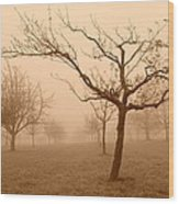 Fields Of Trees Wood Print