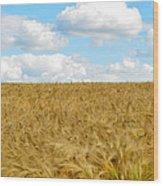 Fields Of Wheat Wood Print
