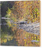 Fiery Reflection At Lost Maples Wood Print