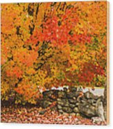 Fiery Rock Wall Wood Print