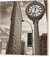 Fifth Avenue Building Wood Print