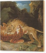 Fight Between A Lion And A Tiger, 1797 Wood Print by James Ward