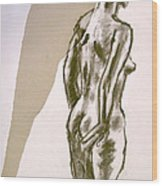 Figure Collage Wood Print