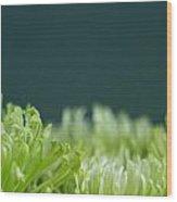 Fiji Green 5 Wood Print