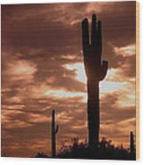 Film Homage Orson Welles Saguaro Cacti The Other Side Of The Wind Carefree Arizona 2004 Wood Print