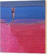 Film Noir  Angela Lansbury The Manchurian Candidate 1962 Flag Water Reflection Casa Grande Az 2005 Wood Print