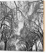 Film Noir Cinematographer Burnett Guffey Glenn Ford Framed 1947  2 Summit Avenue St. Paul Mn 1966 Wood Print