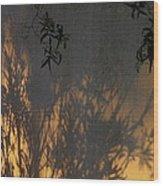 Film Noir Edward G. Robinson Richard Conte House Of Strangers 1949 Casa Grande Arizona 2004 Wood Print