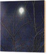 Film Noir Joseph H Lewis So Dark The Night 1946 Moon Trees Casa Grande Arizona 2000 Wood Print