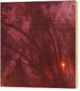 Film Noir Orson Welles Joseph Cotten Journey Into Fear 1942 Summer Storm Trees Casa Grande 2004 Wood Print