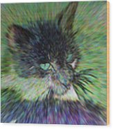 Filtered Cat Wood Print
