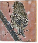 Finch On A Snowy Day Wood Print