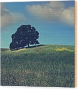 Find It In The Simple Things Wood Print by Laurie Search