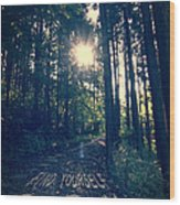 Find Yourself Go Run No. 6 - Forest With Sun Flare Wood Print