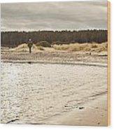 Findhorn Beach Wood Print