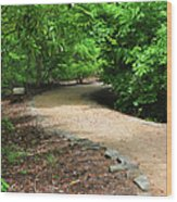 Finding The Way - Yates Mill Wood Print